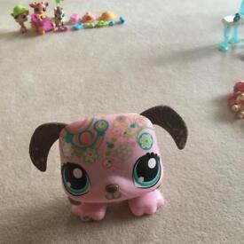 Large littlest pet shop musical pet