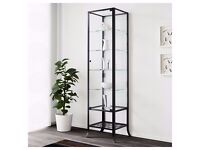 DISPLAY CABINET METAL FRAME WITH GLASS AND TWO GLASS SHELVES