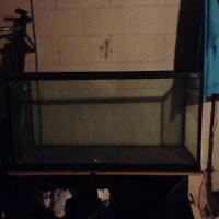 4ft fish tank with stand and some accessories