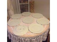 8 dinner platter plates Toscana Olivia range