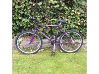 Claude Butler shinobi mountain bike in metallic purple