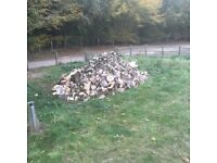 Fire wood for sale 2 year old ready to burn call 07983404624 delivery available at extra cost