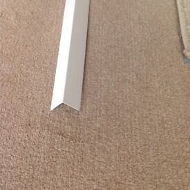 Plastic Angle