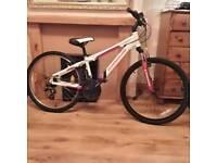 Impulse barracuda mountain bike