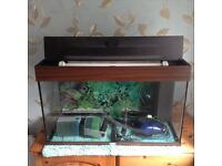 Fish aquarium125ltr complete with lighting, heater, filter unit with circulating and air pump.