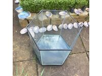 Glass tank for sale