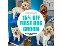 15% off your first dog groom.