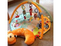 Baby play gym and sit me up