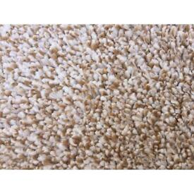 3.12m x 5m BRAND NEW CARPET
