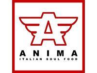 Kitchen Porter - Anima