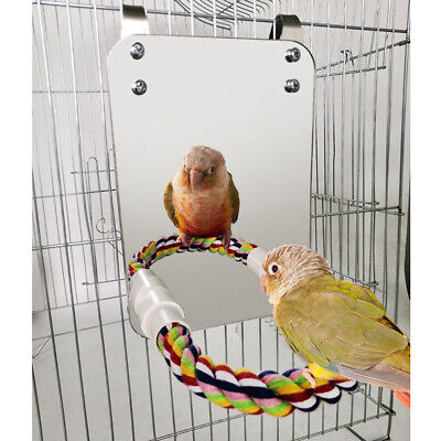 Pet Bird Large Mirror & Perch Toy for Small Parakeet Cockatiel Macaws
