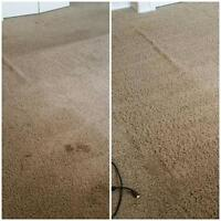 Amazing summer carpet cleaning special!!!