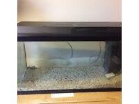 Large Juwel fish tank + heater + light+filter