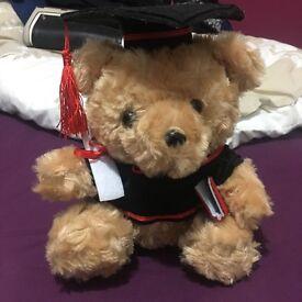Cute graduation teddy for sale