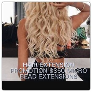 $350 HAIR EXTENSIONS Cronulla Sutherland Area Preview