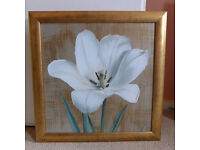 Square Gold Framed Picture Painting White Lilly Flower 46cm x 46cm