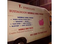 Mobile dog groomer fully qualified