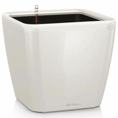 LECHUZA Planter Quadro 28 LS ALL-IN-ONE High-Gloss White Pot Raised Bed 16140