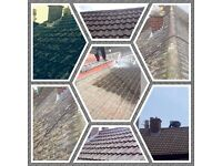 Roofing & Gutter Cleaning & Repairs