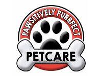 Professional dog walker & pet care, experienced vet nurse in Cramlington and Bedlington