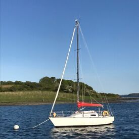 Boat / Yacht anchors – 2 types / sizes | in Killyleagh