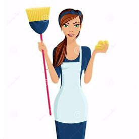 Cleaning and ironing services - Belfast