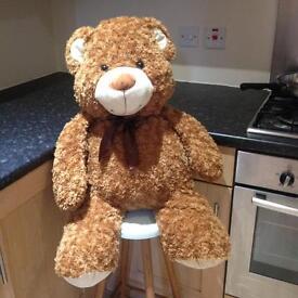 Large fluffy teddy