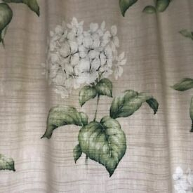 Two pairs of Laura Ashley Heligan Hydrangea Curtains (in cream & green)