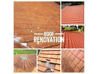 Roof renovation/ gutter repair/replacement