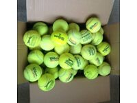 QUALITY STRONG DOG BALLS - POST OR COLLECT