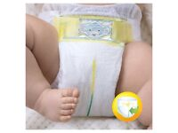 Pampers size 2 pack 240