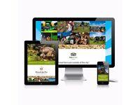 Quality websites from £349   Web Design   Web Services Belfast   Web Designer   SEO