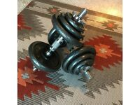20kg dumbells/barbell (10kg on each and extender to make it into a barbell)