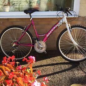 Ladies salcano bike