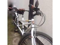 Viking Tandem Bike with accessories