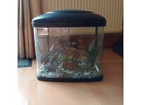 Hot or cold water fish tank. With Filter, heater, gravel and accessories. **Free Delta Therm**
