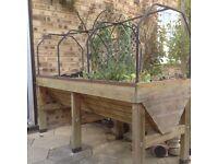 Vegetable trug- raised garden bed