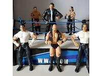 WWE Ring and figures