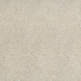 nobe saxony plain carpet