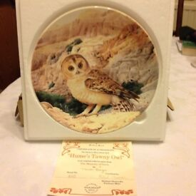 12boxed owl set in mint condition hand painted,certificates with all