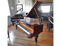 Grotian Steinweg Rosewood Baby Grand Piano By Sherwood Phoenix Pianos
