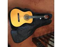 Acoustic Guitar and travel case