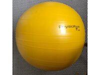 PhysioRoom Gym Swiss Ball 55cm