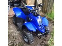 Quad Bike (Mini ATV)