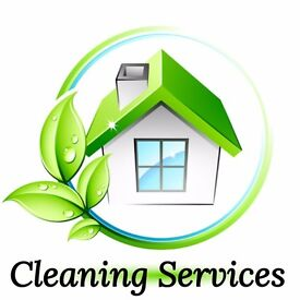 Offer cleaning, cleaner, home help