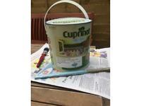 Cuprinol Garden paint