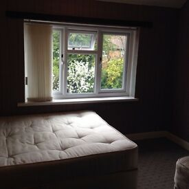 Cozy double in quiet area,good for Shirley, Solihull, Airport,NEC,Business Pk,bills*wifi incl.