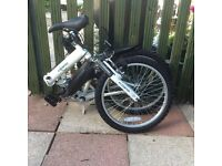 "Ecosmo 20"" folding Mountain Bike"