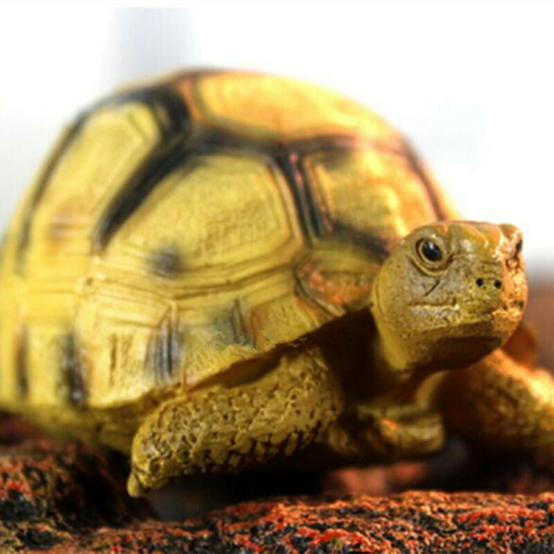 Resin Tortoise Simulated Geochelone Yniphora Turtle Animal Statue Collection
