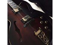 Ibanez SJ300 hollowbody guitar - new/mint condition
